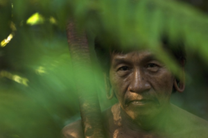 More than the trees: Empowering indigenous people to protect their rainforest homes